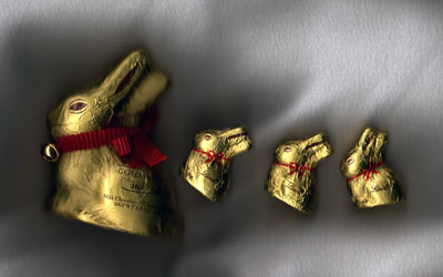 Family of Lindt chocolate bunnies