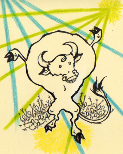 Raving Bull Illustration