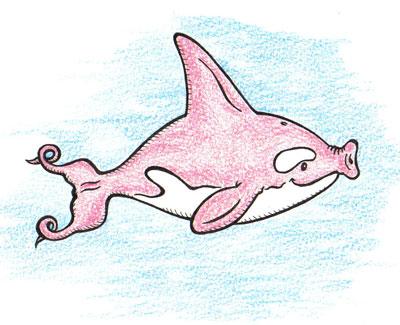 Orca Pork
