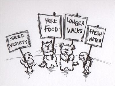 Pet Union