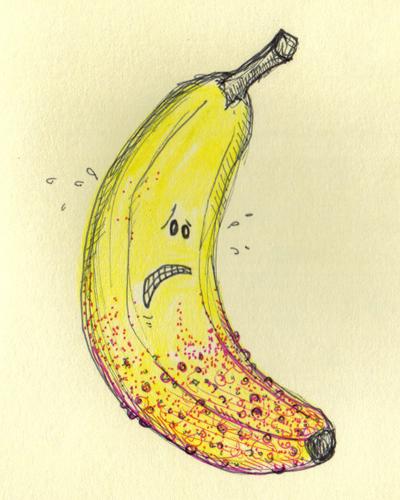 Banana Rash