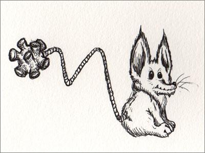 Sucker Ball Tail Fox