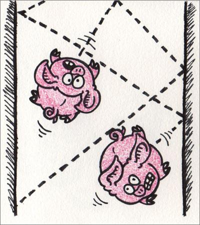 Pork Bounce